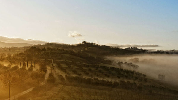 Landscape of Maremma - by Dimit®i