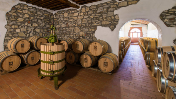 Barrel room at Viticcio